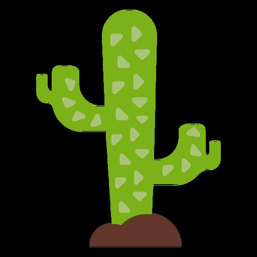 Cactus espina plana Transparent PNG