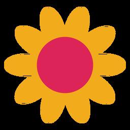 Flor de manzanilla girasol pétalo aster plana