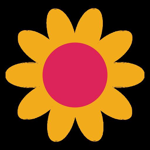 Camomila flor girassol pétala aster plana Transparent PNG