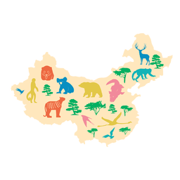 China map illustration