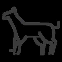 Curso de segurança de guarda de cachorro