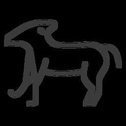 Hund Bein Schwanzstreich