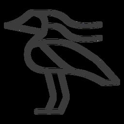 Entenschnabel Vogel Flügelschlag