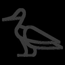 Pato de pluma de pato ala pájaro trazo