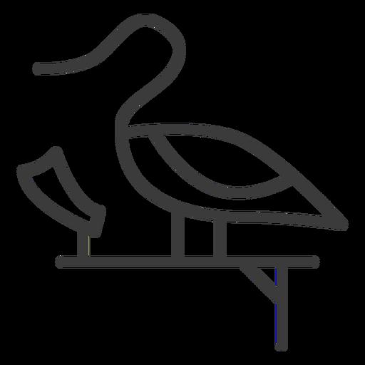 Ente Schwan Sockel Göttlichkeit Flügel Papyrus Schlaganfall Transparent PNG