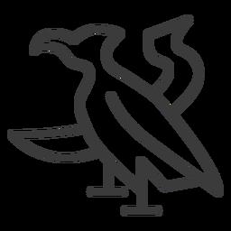 Ala de pico de águila trazo de halcón