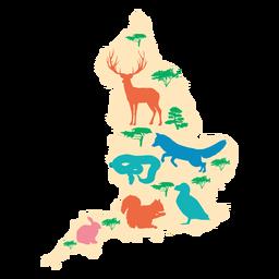 Ilustração do mapa da inglaterra