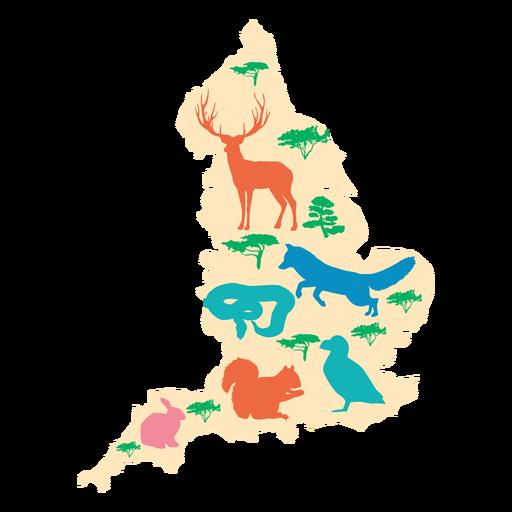 Ilustração do mapa de Inglaterra Transparent PNG