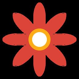 Flower petal aster camomile flat