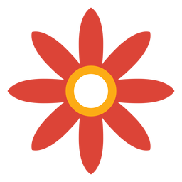 Pétala de flor aster camomila plana