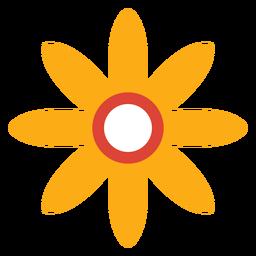 Flor pétala camomila aster plana