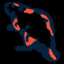 Castor ilustrado