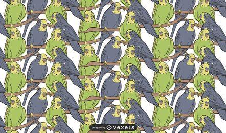 Padrão de papagaios