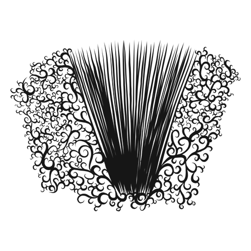 Redemoinho do instrumento musical do acordeão Transparent PNG