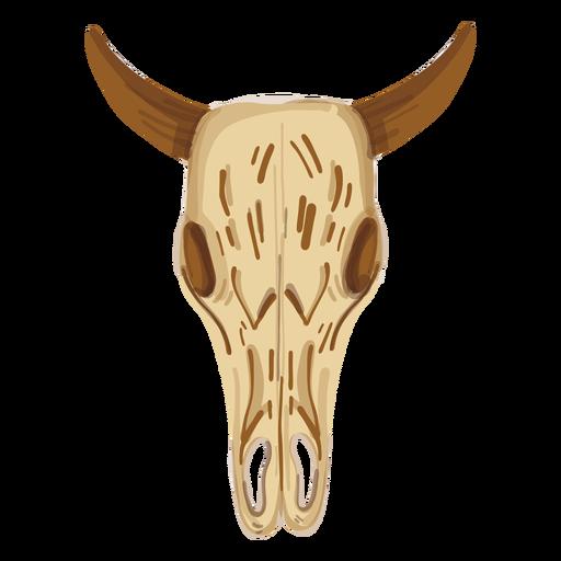 Cráneo de búfalo Transparent PNG