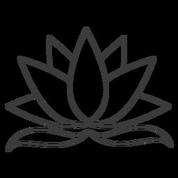 Curso de folhas de lótus