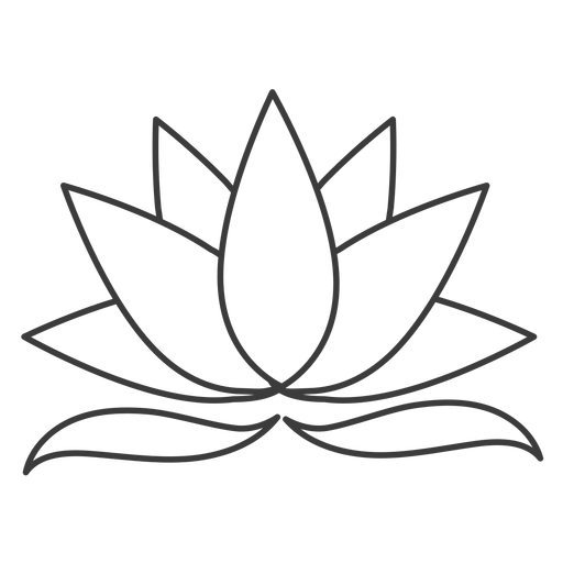 Lotus leaf stroke Transparent PNG