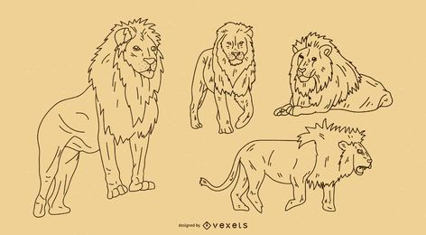 Lion Outline Set