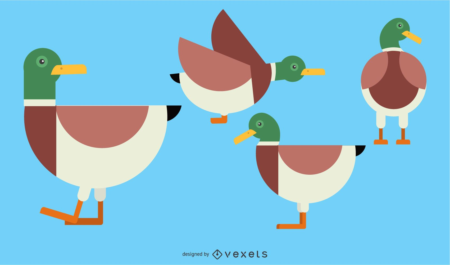 Duck Rounded Geometric Set