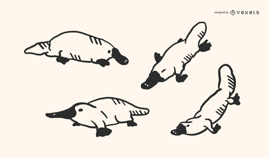 Platypus Doodle Vector Set