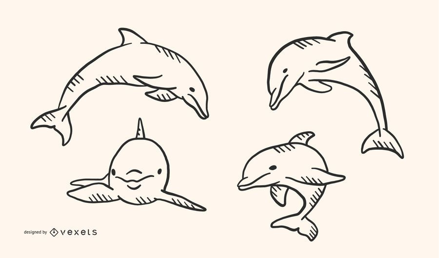 Dolphin Doodle Style Vector Design