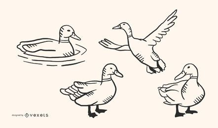 Pato garabato vector conjunto