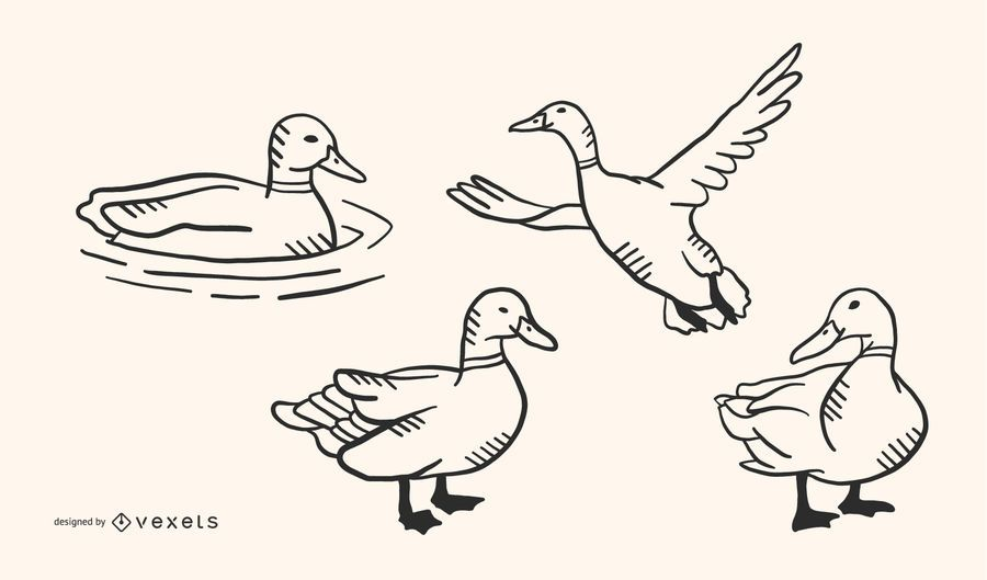 Pato Doodle Vector Set