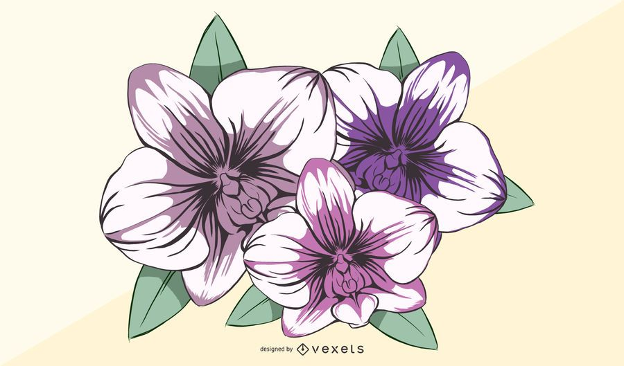 Orchideen-Blumen-Illustration