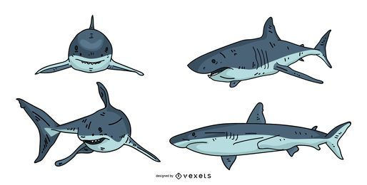 Shark Illustration Design