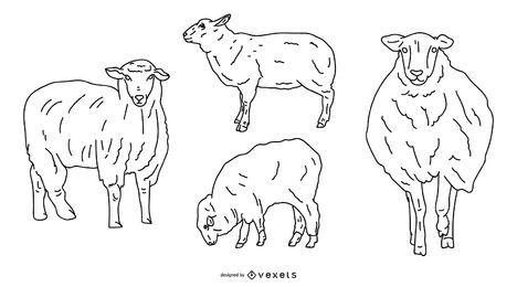 Design de vetor de traçado de ovelhas