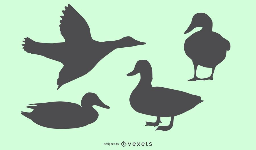 Duck Silhouette Design