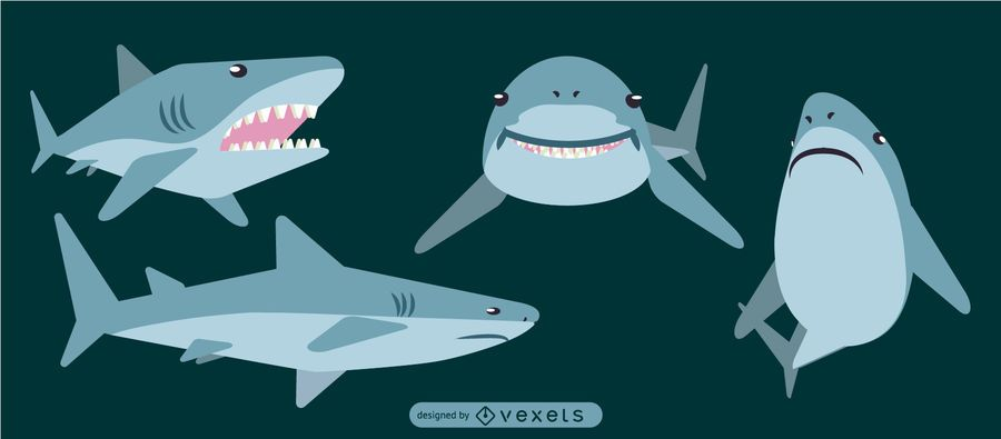 Shark Rounded Flat Geometric Design