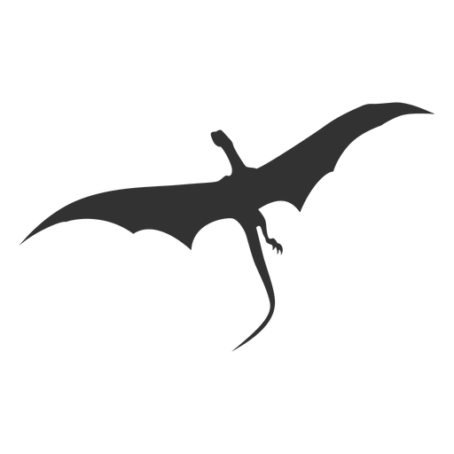 Dragon bottom view silhouette Transparent PNG