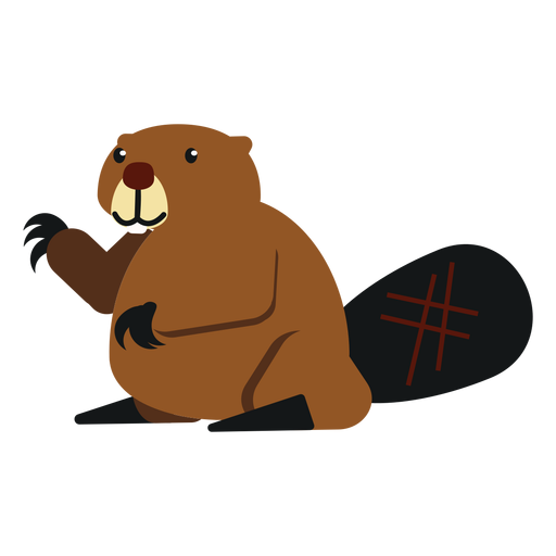 Beaver claw tail fat rodent rounded flat Transparent PNG