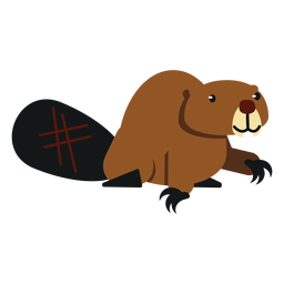 Castor gordo cola garra de roedor redondeada plana