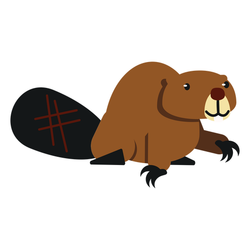 Beaver fat tail rodent claw rounded flat Transparent PNG