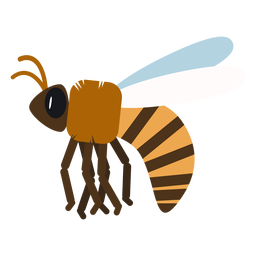 Bee stripe wing wasp rounded flat