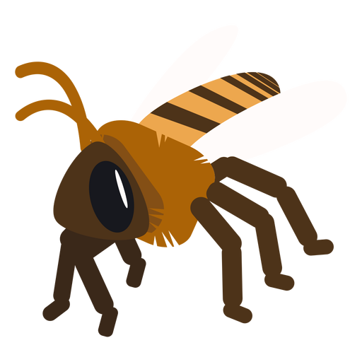 Bee wing stripe wasp rounded flat Transparent PNG