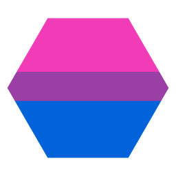Bisexual hexagon stripe flat