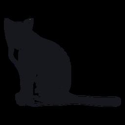 Bozal de gato raya cola de piel doodle