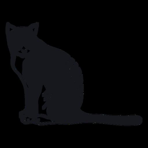 Cat muzzle stripe fur tail doodle