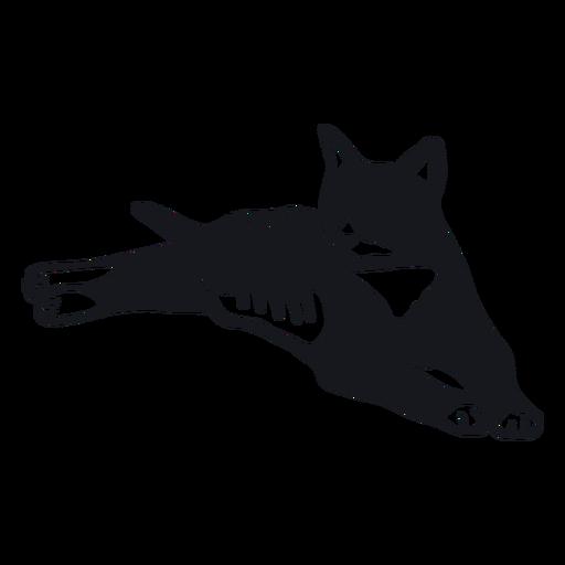 Cat muzzle stripe tail fur doodle