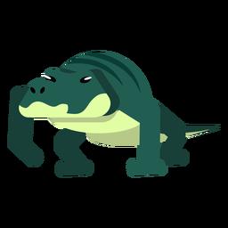 Cauda de crocodilo jacaré listra cauda arredondada plana