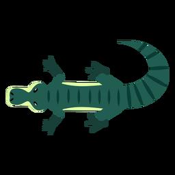 Mandíbulas de cauda de crocodilo jacaré cauda arredondada plana