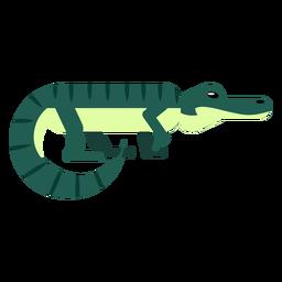 Mandíbulas da listra do jacaré da cauda do crocodilo arredondadas lisas