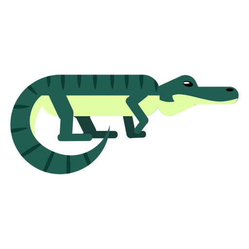 Crocodile tail alligator stripe jaws rounded flat Transparent PNG