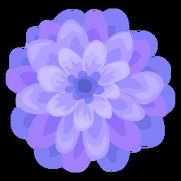 Dahlia flor tallo brote pétalo plana