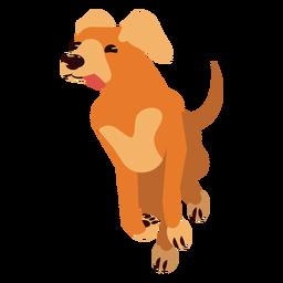 Perro cachorro oreja cola lengua redondeada plana
