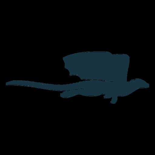 Dragão asa escalas cauda voando silhueta Transparent PNG