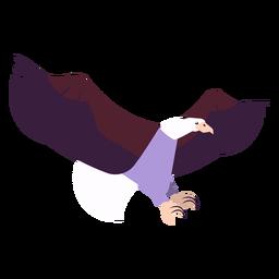 Ala de águila mosca volando pico de garra redondeada plana
